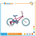 Best Price for Freestyle Children Bike