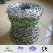 Barbed Wire (HT-R-002)