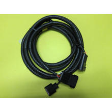 Auto Lamp Wire Harness