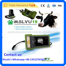 Multiple function portable handhled veterinary ultrasound / vet ultrasound device for dog,cat, pig,equine, cow,sheep MSLVU19i