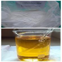 Músculo edificio 15262-86-9 hormona esteroide testosterona isocaproato (Sh-Ts006)