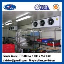 food processing cold freezer storage room