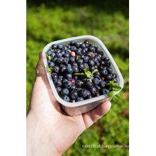 IQF Congelamento Orgânico Blueberry -160002
