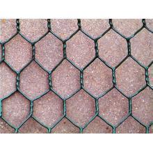 Revestimiento en polvo de malla de alambre hexagonal en el mejor precio