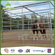 Livestock Panel
