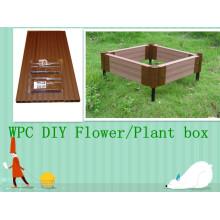 La mayoría del DIY popular florecen / la caja de la planta