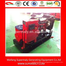 Generador más popular diesel 8 kw
