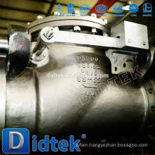 Didtek Medical Swing Check Valve With Flange