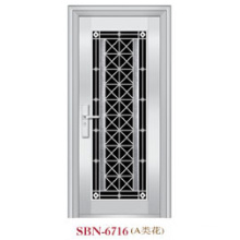 Stainless Steel Door for Outside Sunshine (SBN-6716)