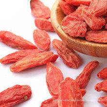 China Organic Premium Quality Dried Natural Red Goji Wolfberry Goji Berries