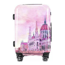 Printing Trolley Case with Your Own Printing