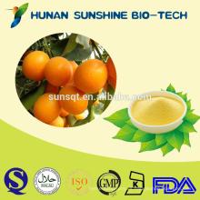 Venta caliente sin polvo de fruta de sabor artificial Kumquat en polvo