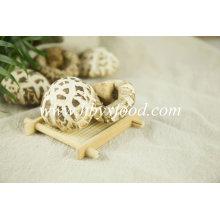 Qualitäts-Blumen-Shiitake-Pilz-getrocknetes Gemüse