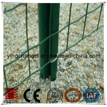 Esgrima de malla de alambre galvanizado de Holanda