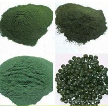 Organische Spirulina (XT-FL393)