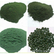 Natural Powder/Tablets Spirulina (XT-FL391)