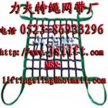 polyester web cargo net,webbing net