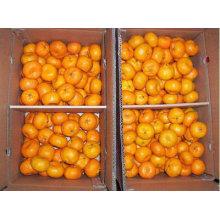 мед сладкий Апельсин mardain оранжевый