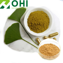 Ginkgo Leaf Extract pulver