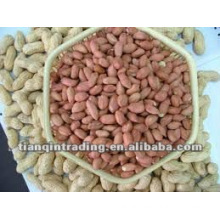 Peanut exporter