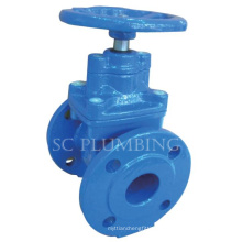 Resilient Seated Gate Valve Bs5163 (Flange end)