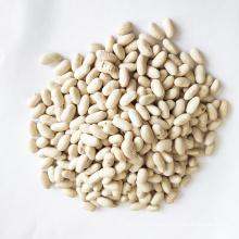 For Sale High Quality Northeast Baishake White Kidney Beans