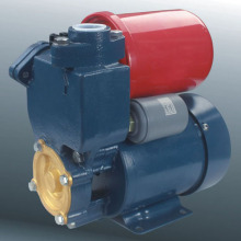 Self-Priming Peripheral Pump (DGP)