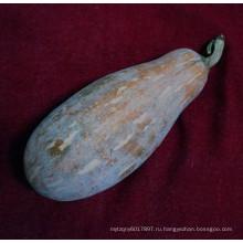 HPU02 Dangwu оранжевый гибрид F1 семена тыквы