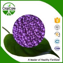 Granular NPK Fertilizer 21-21-21 with Factory Price