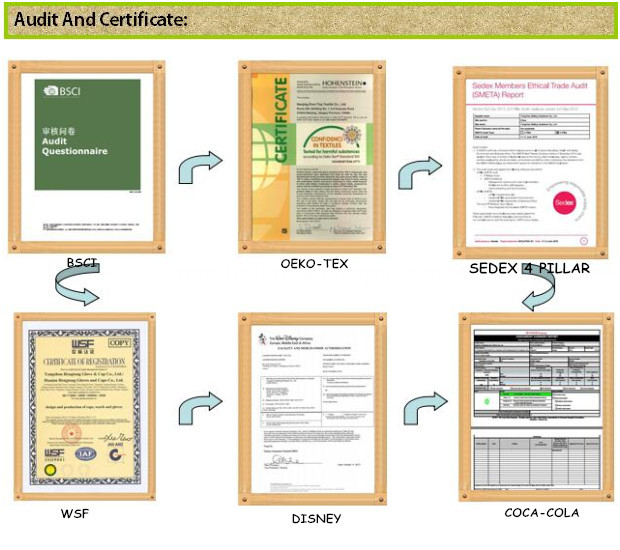 Audit and Certificate
