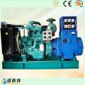 Low Price 40kw/50kVA Ricardo Diesel Generator Set