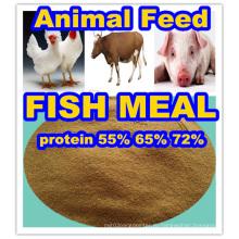 Рыбу кормят рыбной муки с 72% содержанием белка