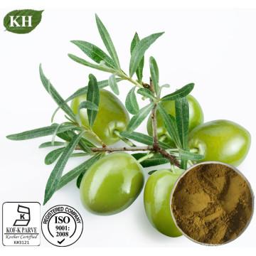 Anti-Cancer pour Hydroxytyrosol 20% Extrait de Feuille d'Olive