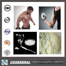 Anastrozoles de la hormona esteroide anabólica de la pureza del 99% (Arimidex) para el edificio del músculo