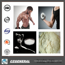99% Purity Anabolic Steroid Hormone Anastrozoles (Arimidex) for Muscle Building