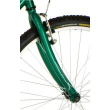 "26"" 21s Good Quality Alloy Lightweight Rims Carbon Women Beach Tandem Bike"