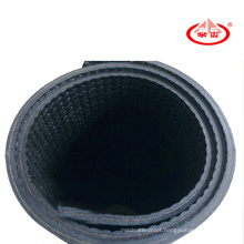 APP Waterproof Membrane for Roof