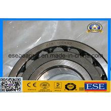 Rodamiento de rodillos esféricos con rodamiento (21317CCW33)