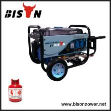 Bison China Zhejiang AVR para o soldador do gerador 3KVA 3KW 3000W Gás do GPL Gerador portátil do querosene