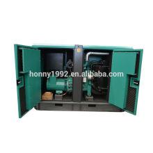 25kW Diesel 220V Kleine Generator zum Verkauf