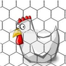 Malha de arame hexagonal, rede para criação de frango