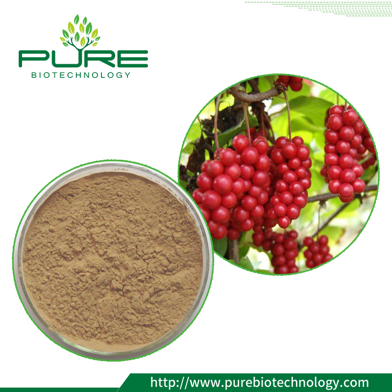 schisandra chinensis berry powder