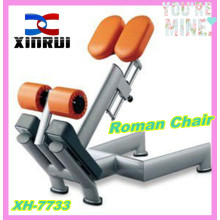adjustable Roman Chair for sale / 45 Degree Back Extension machine /gym equipment