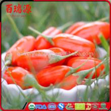 High Quality (SO2 Free) Goji Berries, EU Certified Organic Company
