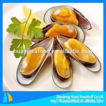 Fornecedor chinês de frutos do mar suprimentos congelados meia shell mexilhão qualidade agradável