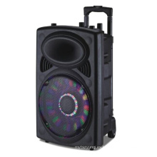 12 '' Altavoz recargable Bluetooth / FM / USB / SD / Luces / Mic / Remoto 6814D