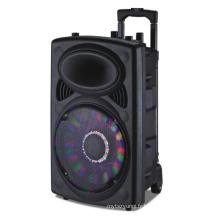 12 '' haut-parleur rechargeable Bluetooth / FM / USB / SD / lumières / micro / à distance 6814D