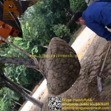 Raíz de la raíz del árbol de la cesta de alambre Plantas de malla Root Ball Net