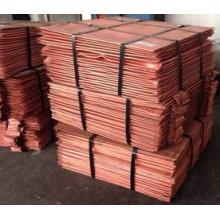 Fábrica de venda direta cátodo de cobre puro