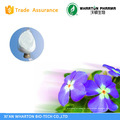 China Supplier high quality Best Price Vinpocetine 42971-09-5 of powder